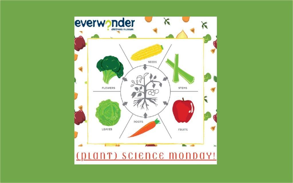 (Plant) Science Monday!